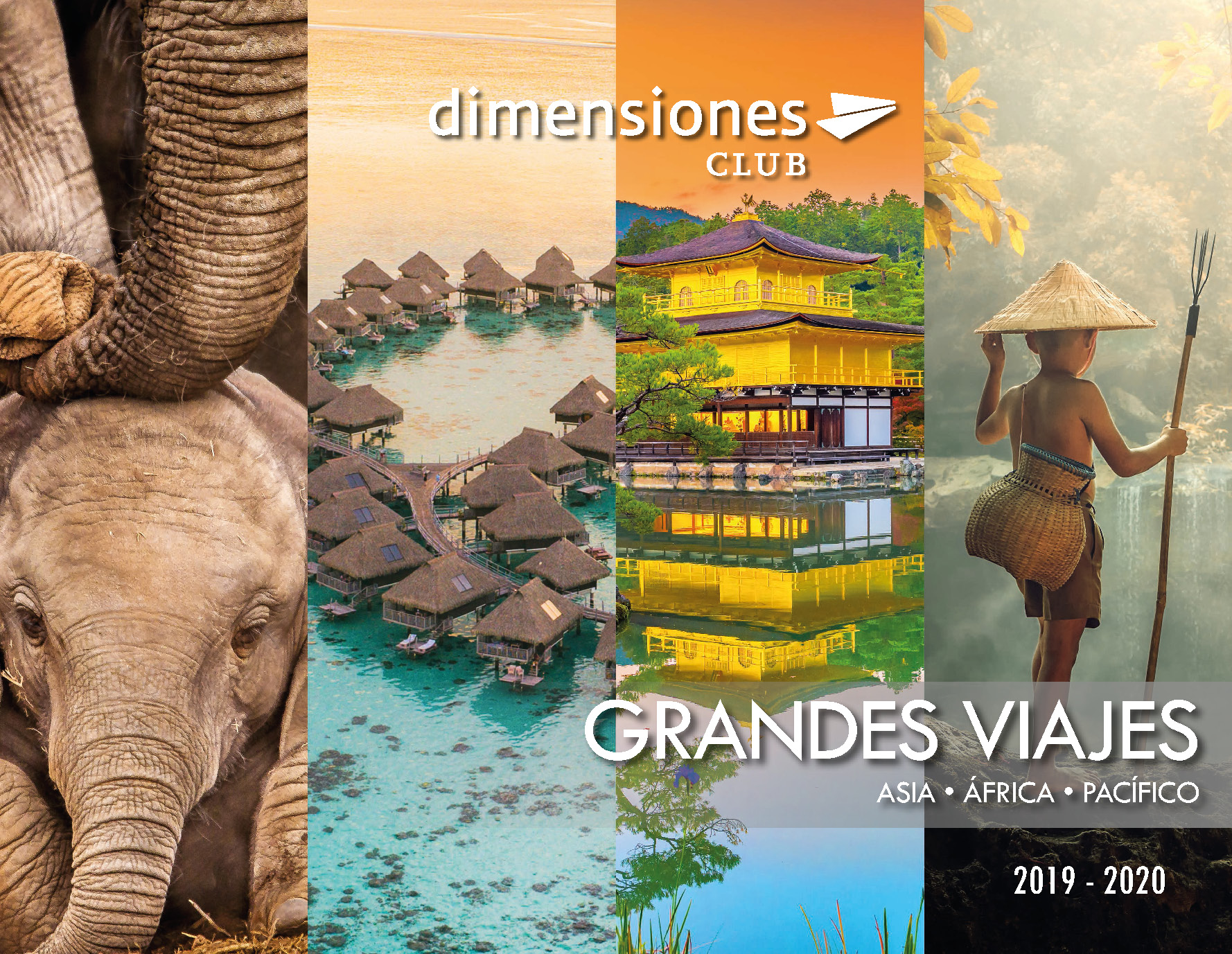 Catalogo Dimensiones Club Asia Africa Pacifico 2019
