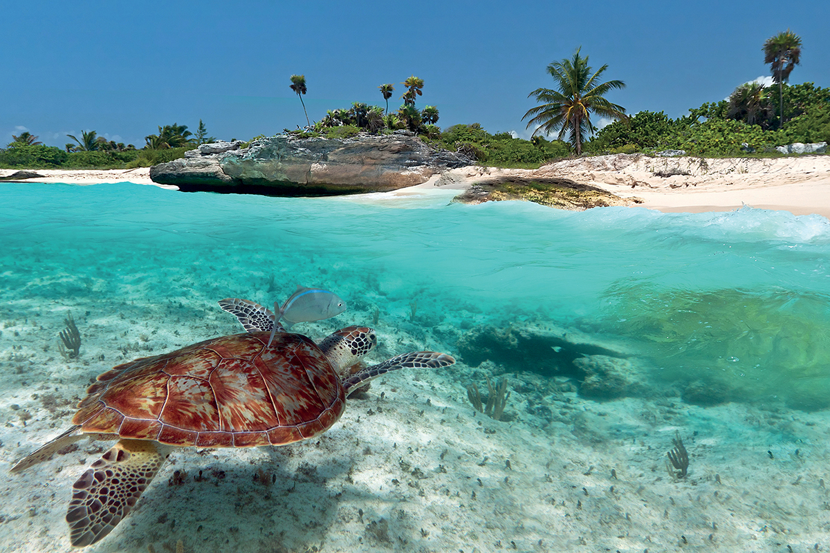 Viajes al Caribe de Catai Tours Barbados