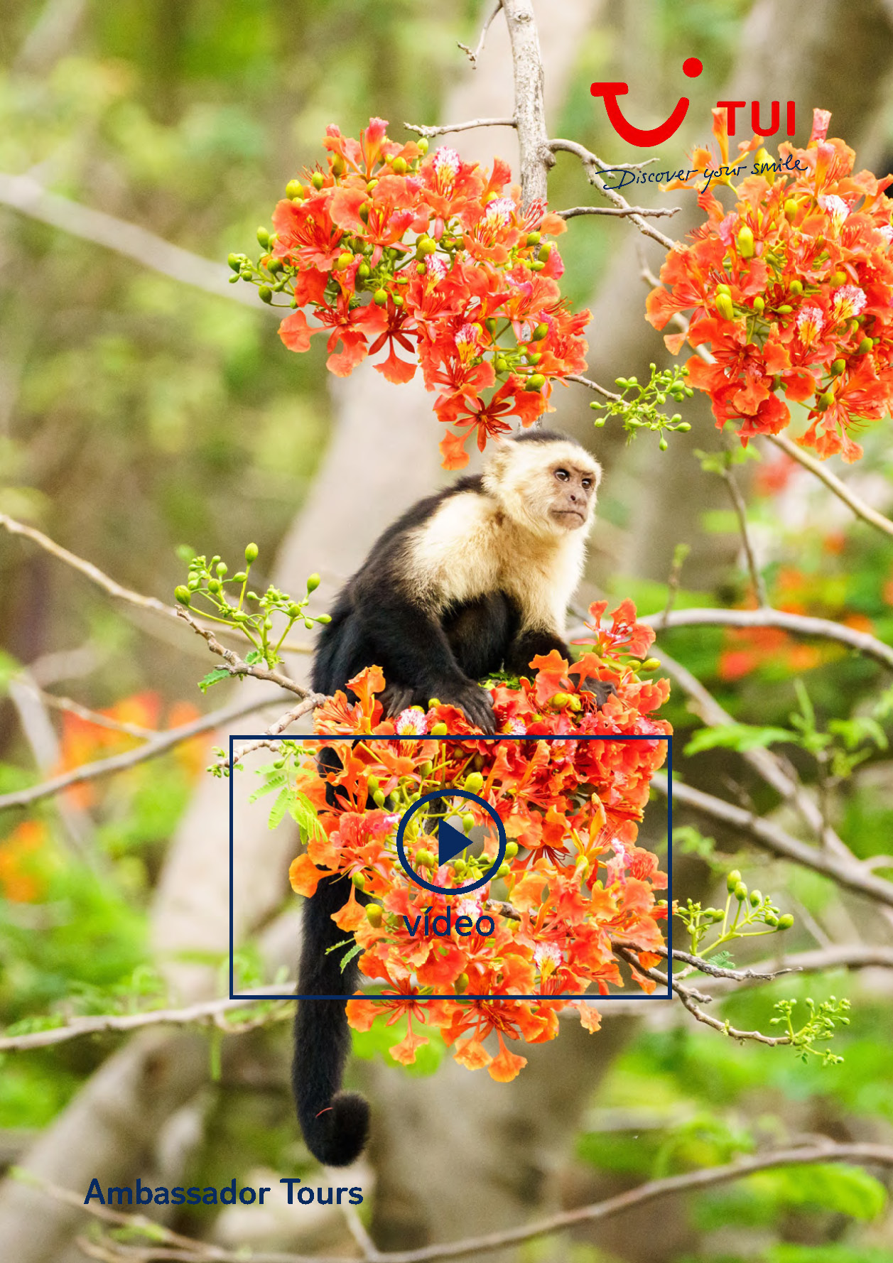Video TUI Costa Rica 7