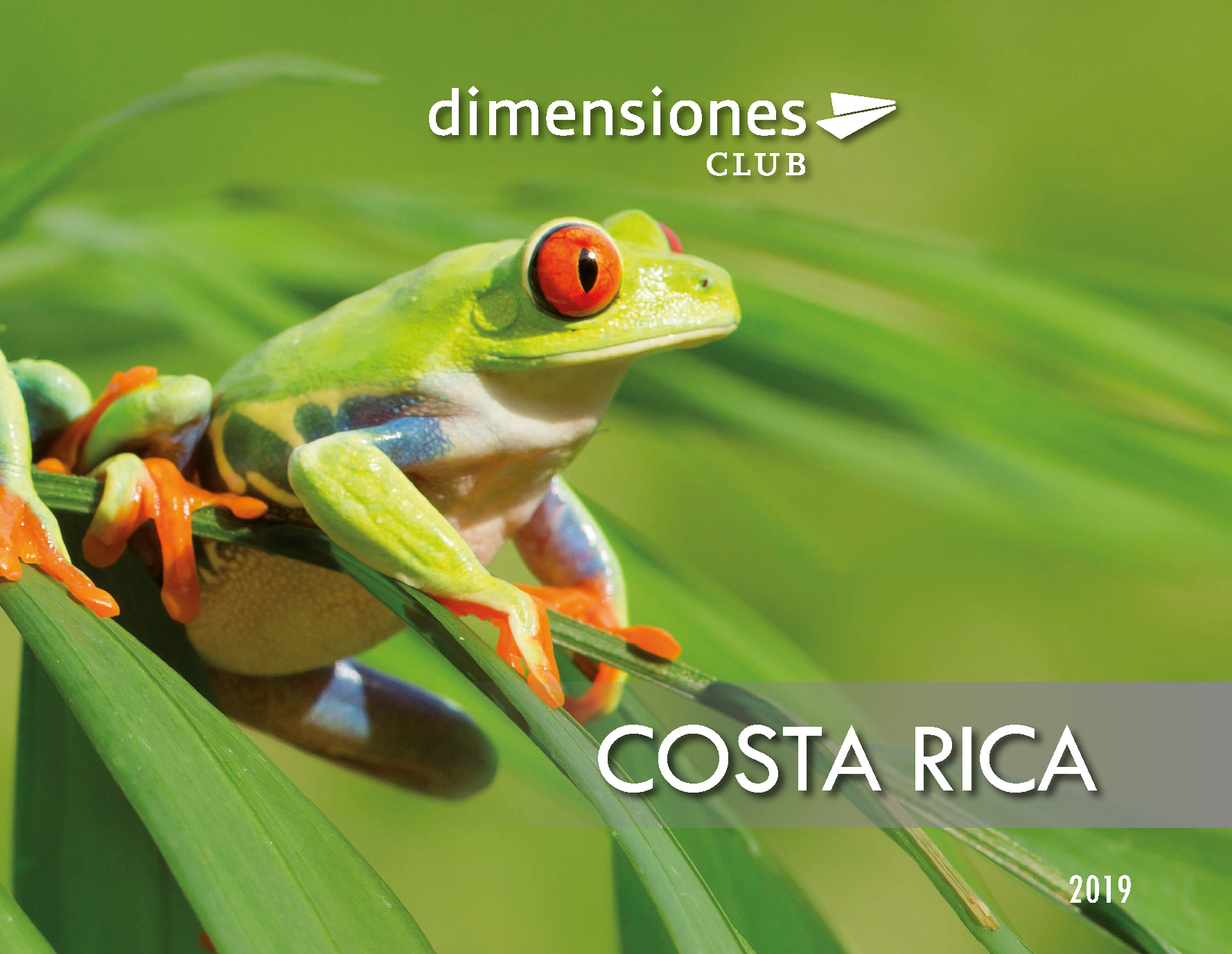 Catalogo Dimensiones Club Costa Rica 2019
