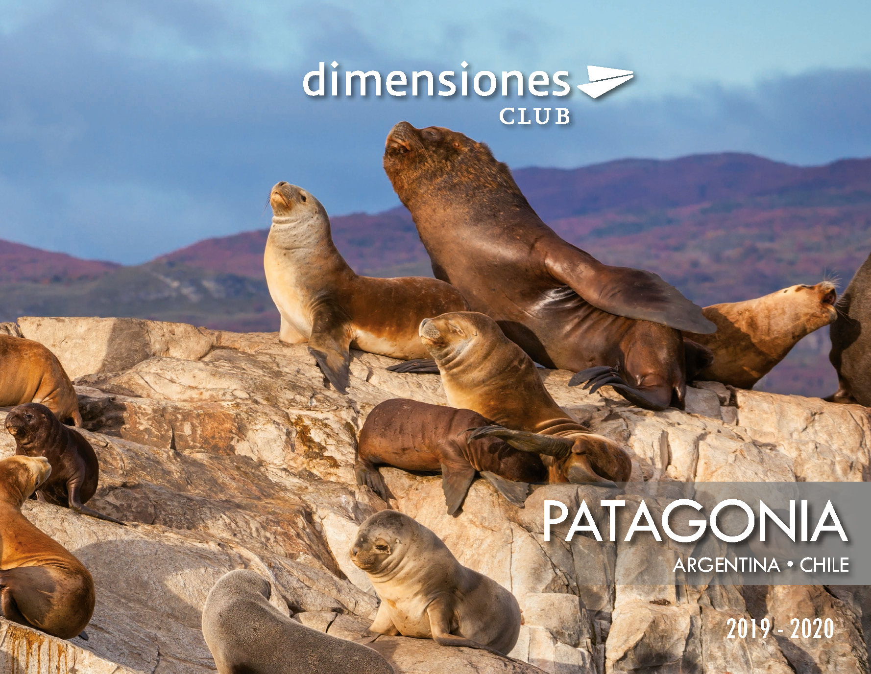 Catalogo Dimensiones Club Patagonia 2019-2020