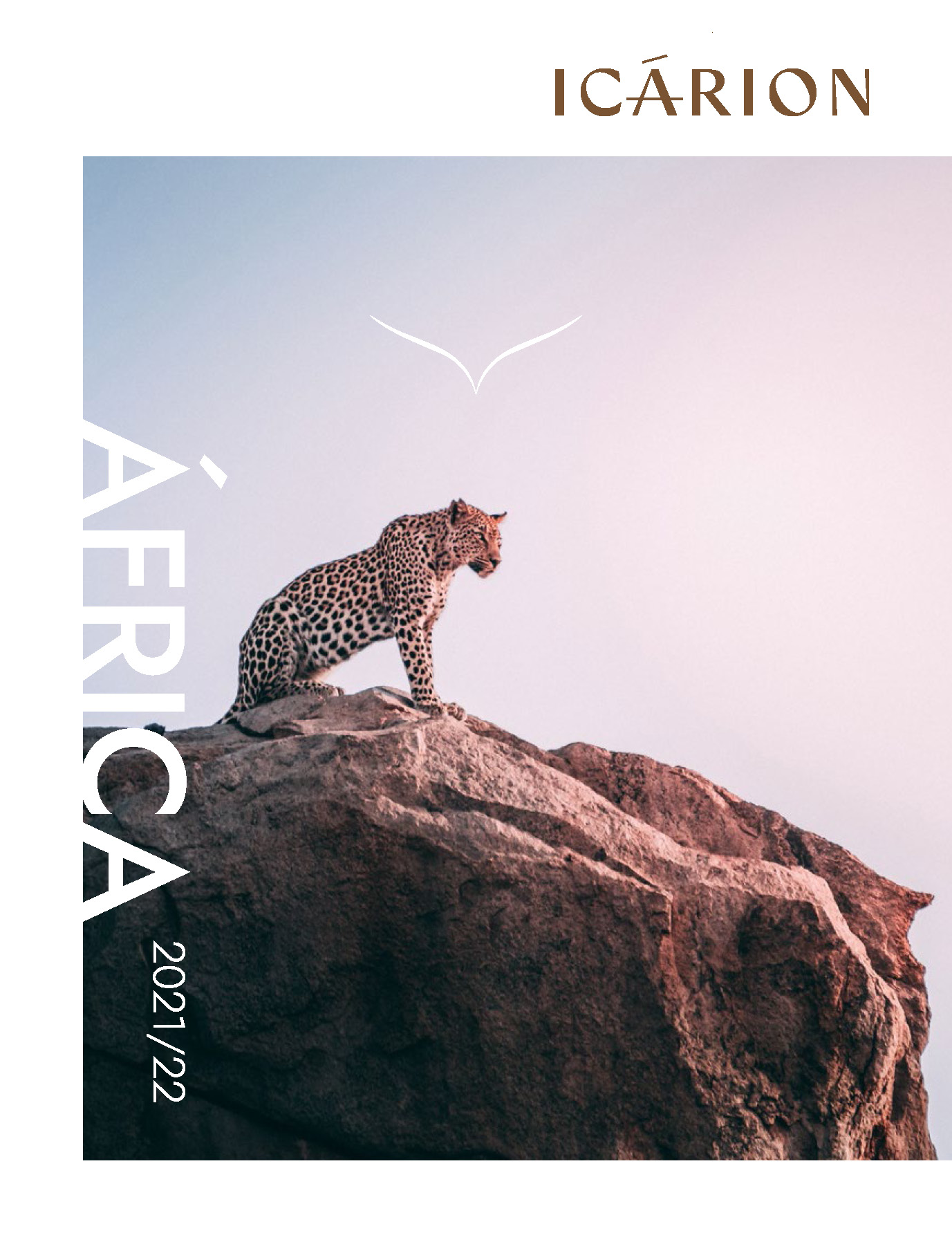 Catalogo Icarion Africa 2021-2022