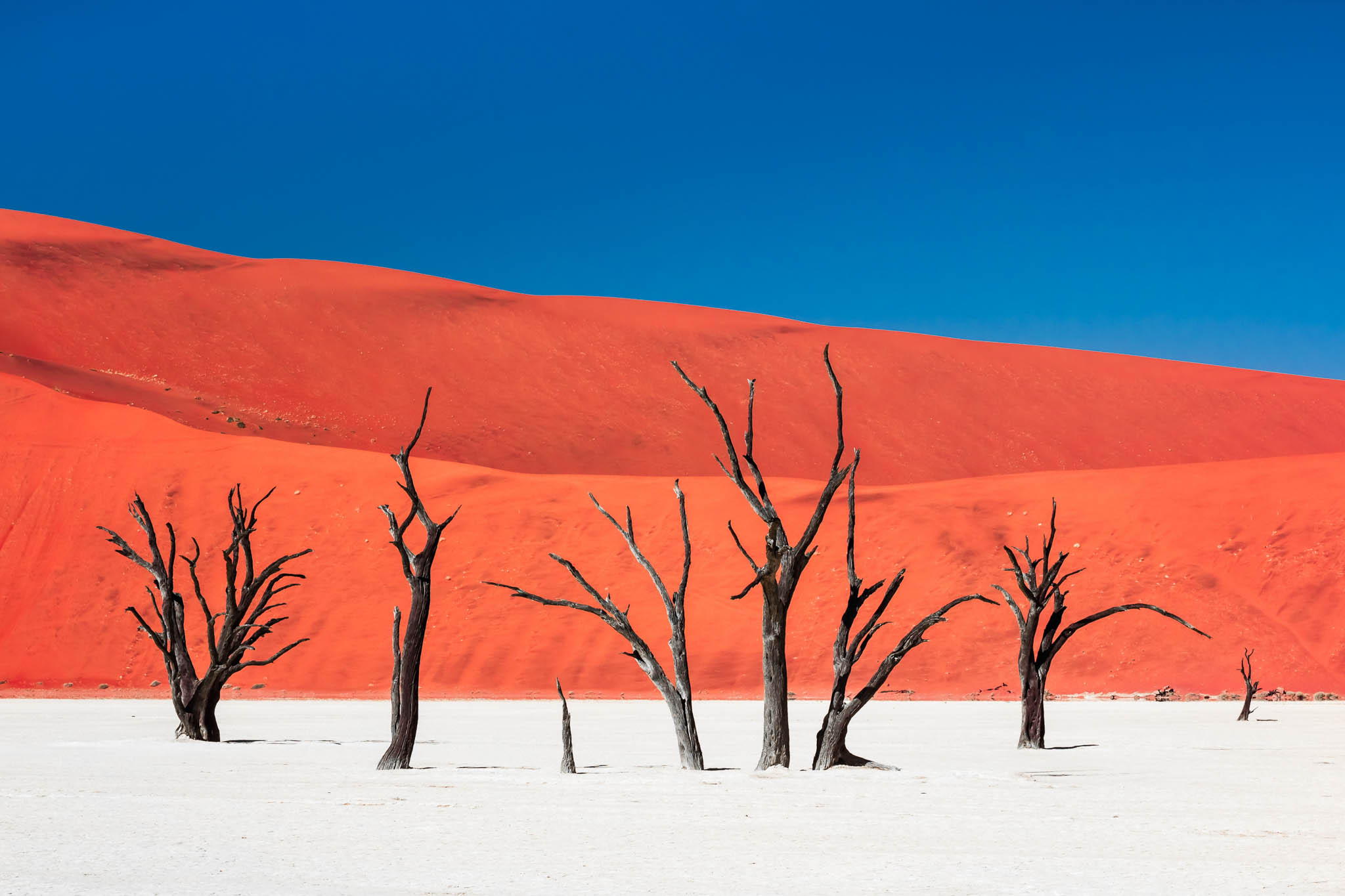 Circuitos por África de Catai Tours. Namibia.